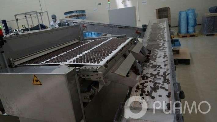 В Московской области открыли фабрику пищевых ингридиентов