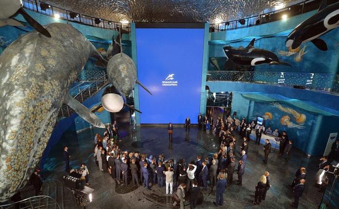 На острове Русский открылся Приморский океанариум Дальневосточного отделения РАН