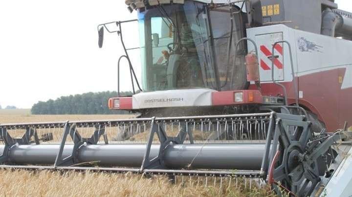 В России собрано более 100 млн тонн зерна