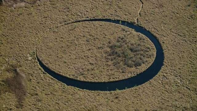 Вращающийся остров в «чёрной» воде обнаружен в болотах Аргентины