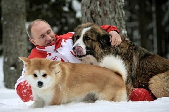 Тестовое агрессивное вторжение Путина в полуевропейскую Украину