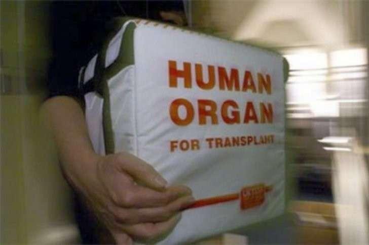 Новый украинский закон о трансплантологии превращает Украину в страну дешёвых почек