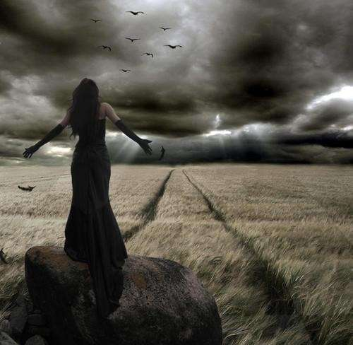 Дорога в Рай тоже требует ухода и заботливых рук