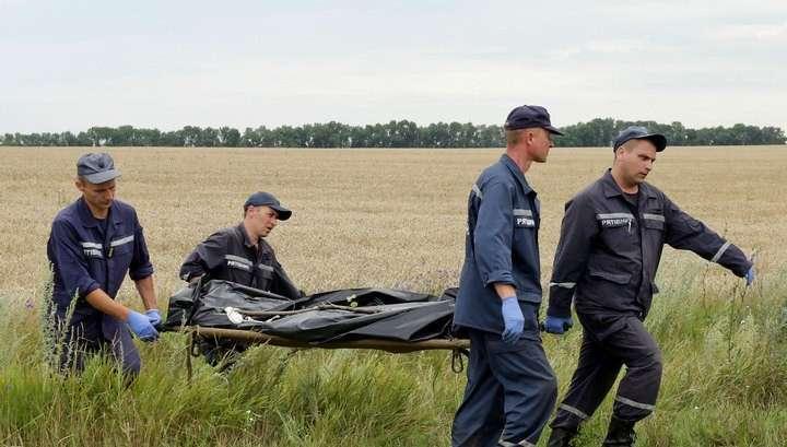 СК РФ передаст Нидерландам информацию о сбитом в Донбассе малайзийском Боинге MH17