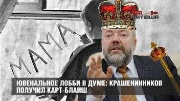 Ювенальное лобби в Думе: Крашенинников получил карт-бланш ЕР