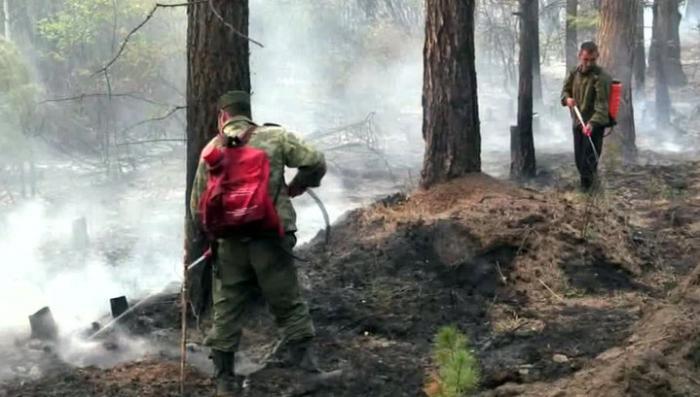 Лесные пожары: в Иркутской области объявлен режим ЧС