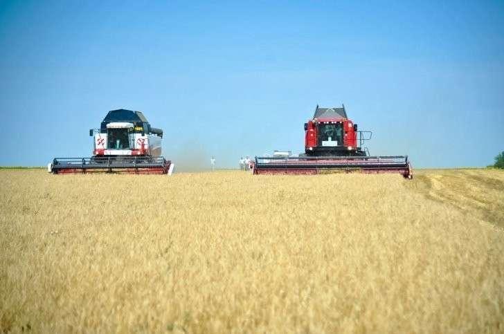 Беззаконие, процветающее в Краснодарском крае, довело фермера до самоубийства