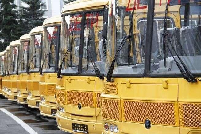 4. В школы Новосибирской области отправлено 19 новых автобусов Сделано у нас, политика, факты