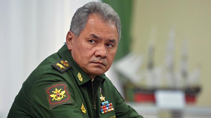 Шойгу подвёл годовые итоги операции ВКС России в Сирии