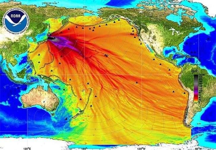 Фукусима отравила весь Тихий океан, но все об этом молчат