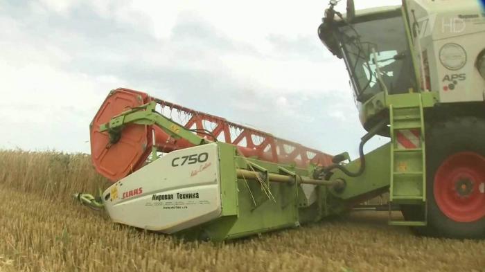 Путин: Российское сельское хозяйство на подъеме, и государство продолжит оказывать широкую поддержку отрасли