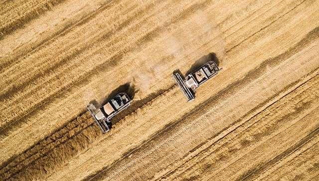Россия возвращает себе статус «зерновой сверхдержавы» Мира