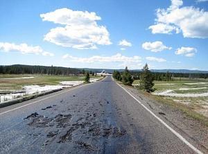 Йеллоустонский национальный парк закрыт – дороги расплавились из-за подземного жара