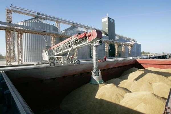 Запасы зерна в России выросли, но хлеб в магазинах подорожал
