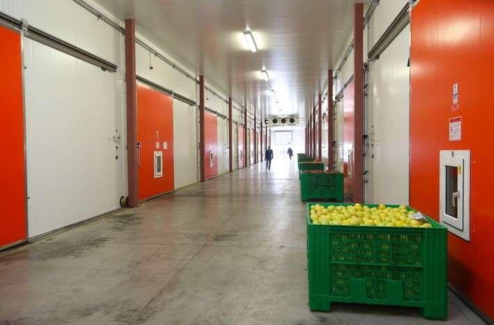 21. В Ингушетии введены в эксплуатацию новые фруктохранилища Сделано у нас, политика, россия, факты