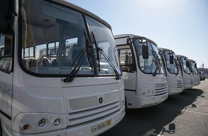 3. Учреждения культуры Приморского края получили 9 новых автобусов Сделано у нас, политика, россия, факты