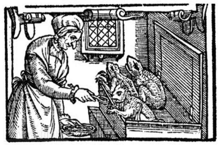 Дикие нравы средневековой Европы: почему и как люди боролись с кошками