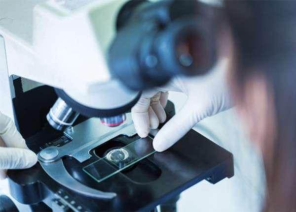 31. «Швабе» разработал цифровой микроскоп Сделано у нас, политика, факты