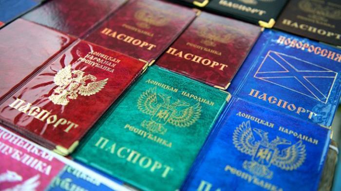 Депутат Госдумы предложил выдавать паспорта России жителям ДНР и ЛНР