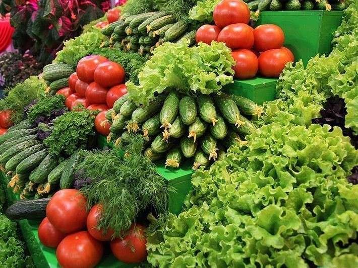 В России на треть увеличивается валовый сбор тепличных овощей