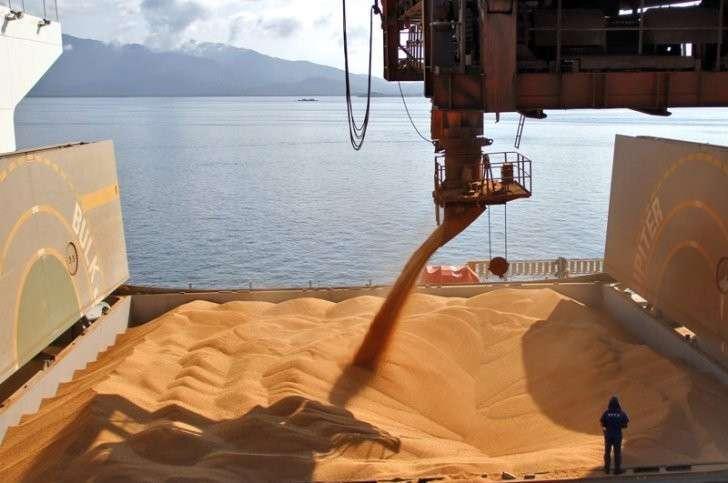 15. Россия увеличивает экспорт зерна в Японию и Вьетнам Сделано у нас, политика, факты