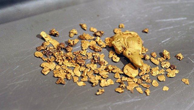 Житель Приамурья получил условный срок за найденную банку с золотом