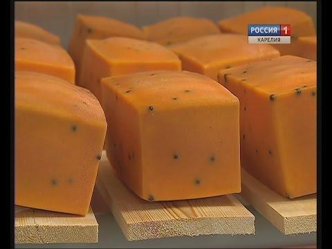 Новая карельская сыроварня выпустила первую партию сыров