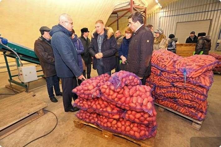 В Свердловской области открыт новый логистический центр по переработке овощей местного производства
