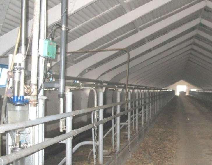23. В Казанском районе Тюменской области открыта молочно-товарная ферма Сделано у нас, политика, факты