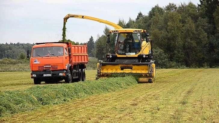 25. На поддержку аграриев направят более 220 миллиардов рублей Сделано у нас, политика, факты