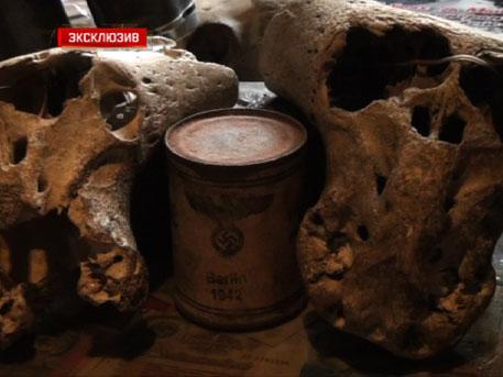 Антропологи выясняют, кому принадлежат таинственные черепа из сундука «Аненербе»