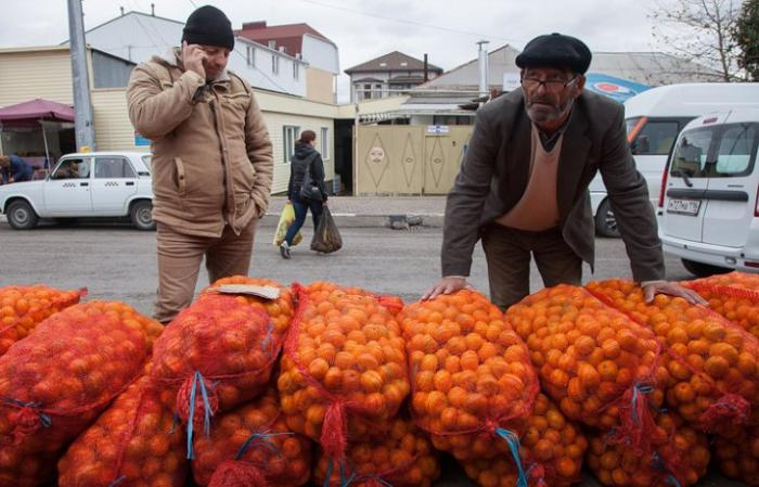 Путь мандарина: как дорожают абхазские фрукты по дороге в Москву
