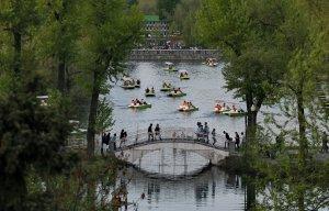 Парк Горького в Москве стал больше на 43 га