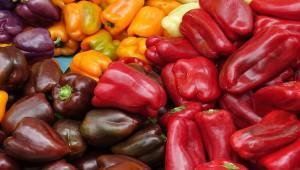Импорт турецких овощей не возобновится до нового года