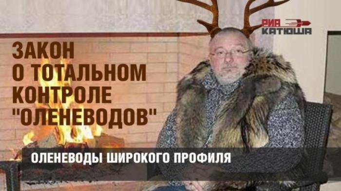 Совет Федерации одобрил закон о тотальном контроле над семьёй