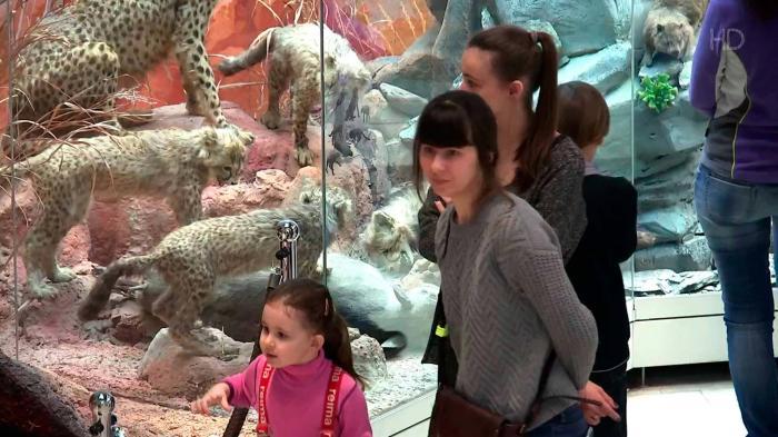 Московские музеи будут бесплатно работать во время новогодних каникул