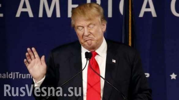 Сборник высказываний президента США Дональда Трампа и его союзников по ключевым вопросам | Русская весна
