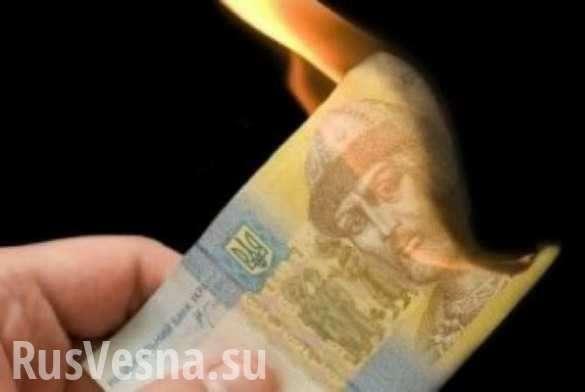 Статистика: Украинскую гривну ждет катастрофический обвал | Русская весна