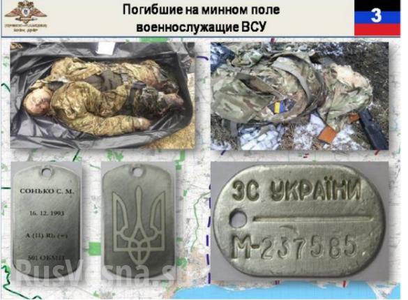 Киевские евреи отправили украинских карателей за «языком» на минное поле: вся группа погибла | Русская весна
