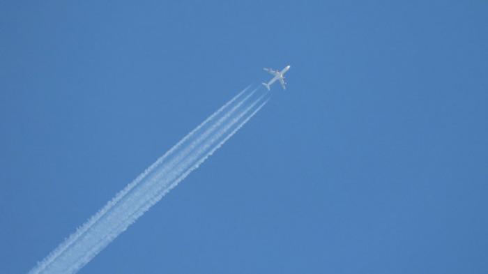 При падении Boeing 747 под Бишкеком погибли двадцать человек