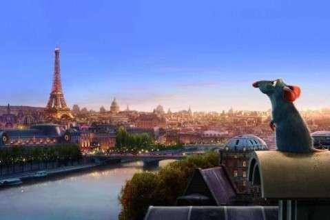 Ах Париж! - крысиная столица Европейского союза: «крысы - они как голуби»