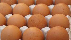 Тюменская птицефабрика увеличит производство на треть в 2017