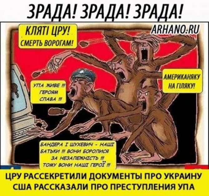 Лютый удар в спину: ЦРУ рассекретили документы про преступления ОУН-УПА