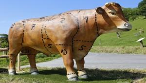 Россия ограничила импорт говядины из Белоруссии