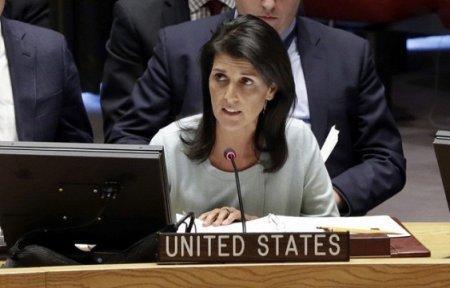 Несколько мыслей о новой девочке Трампа в ООН