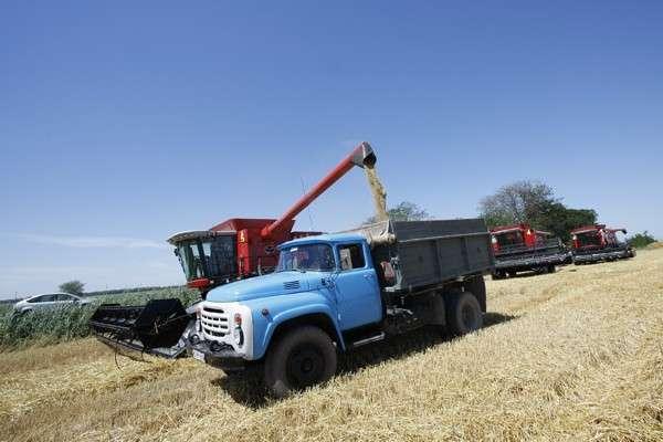 На Кубани собрали рекордный урожай зерновых