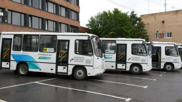 Успех российских автобусов: ПАЗ лидирует на украинском рынке