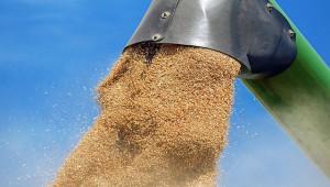 Импортозамещающее производство для сельского хозяйства наладят под Калугой