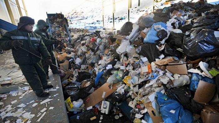 Какие современные способы утилизации мусора востребованы в России