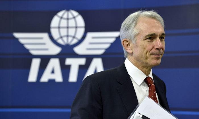 IATA обвинила Украину в гибели малайзийского «Боинга»